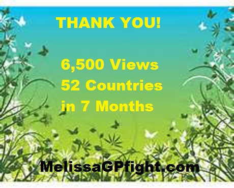 A Thank You to the 6,500 Visitors and update on what I have been doing.