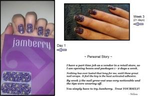 Jamberry Webtastic 2014 a